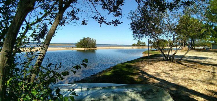 Lac de Cazaux et de Sanguinet : où camper à proximité ?