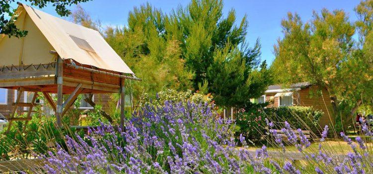 Sur quel site séjourner en plein air à Barcarès ?